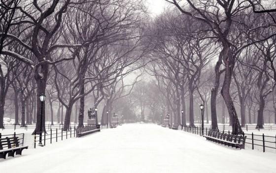 winter-images-1.jpg